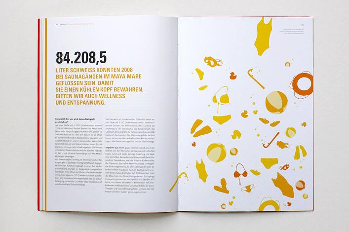 Stadtwerke Halle Geschäftsbericht 2008