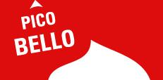 Stadtwerke Halle // T-Shirt Pico Bello